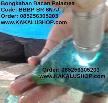 Jual Bahan Batu Bacan Palamea 6 Ons Warna Biru