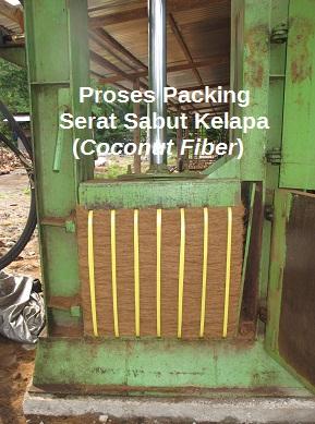 Packing Sabut Kelapa (Coconut Fiber) Kualitas Ekspor